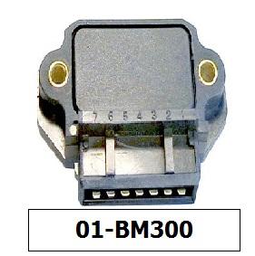 bm300